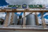 Перші досягнення: філія «Хортиця» прийняла більше трьох тисяч тонн зерна нового врожаю