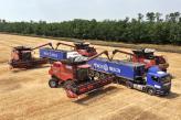 Виробничі філії «НІБУЛОНа» завершили збирання ранніх зернових культур